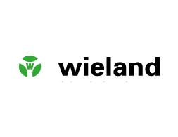 wieland electric